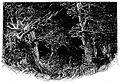 Malot - En famille, 1893 p103.jpg