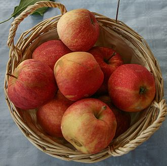 Gala (apple) - Image: Malus Gala