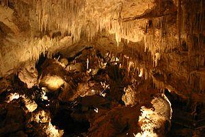 Mammoth Cave (Western Australia) - Interior