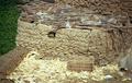 Manciate di fango per la costruzione di un muro (Cairo 2002).png