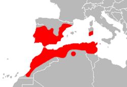 Mapa Hemorrhois_hippocrepis.png