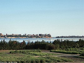 Taranto Wikipedia