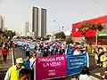 Marcha por la Vida 2018 Perú (8).jpg