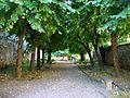 Mareil-en-France (95), esplanade.jpg