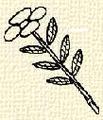 Margaréta (,heraldika).PNG