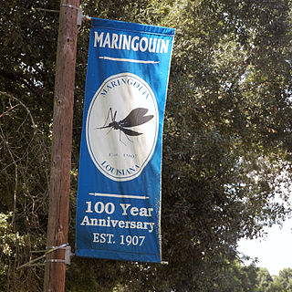 Maringouin, Louisiana Town in Louisiana, United States