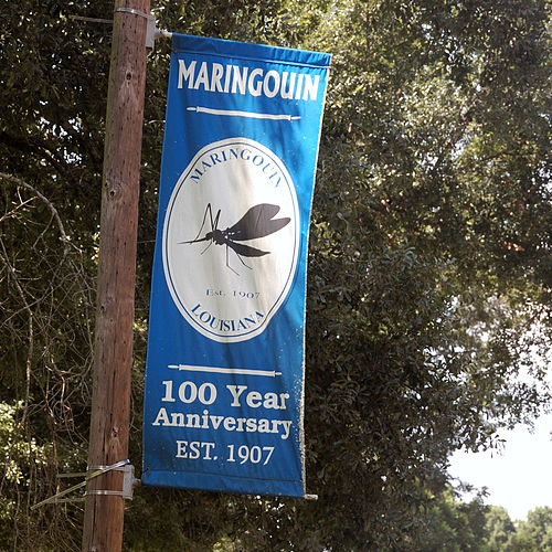 Maringouin chiropractor