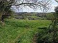 Meadow near Doccombe Cross - geograph.org.uk - 1292901.jpg