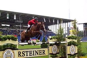 Zweibrücker - A Zweibrücker horse performing show jumping