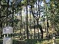 Mesahozuka Kofun 01.jpg