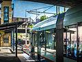 Metro Light Rail Lilyfield Tram Stop.jpg