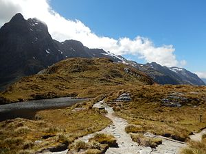 New Zealand Great Walks - Mountain pass on Milford Track