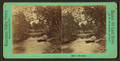 Mill Stream, from Robert N. Dennis collection of stereoscopic views.png