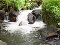 Mimbalut Falls Iligan City 03.JPG