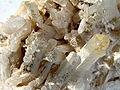 Mineral Cuarzo GDFL025.jpg