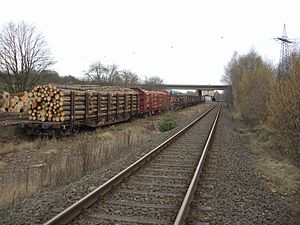 Flat wagon - Flat wagons for carrying timber: the Class Snps719 (front) and the Class Roos-t642 (behind)