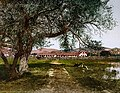 Mission San Antonio de Padua, Monterey County, California, 1898 (1).jpg