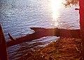 Mississippi River - Fridley, MN - panoramio (6).jpg