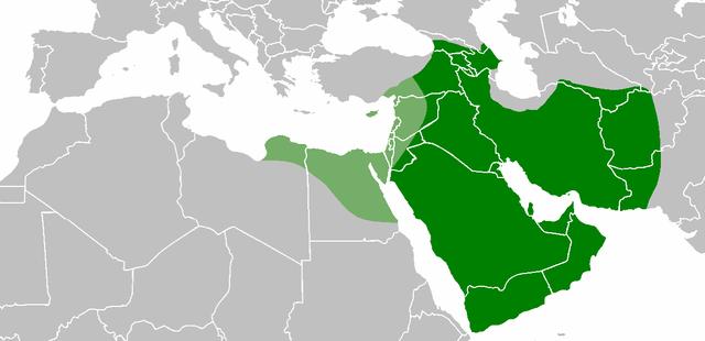 Халифат при Али в 661 году.