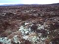 Moorland north of Loch Ille Mhor - geograph.org.uk - 1220034.jpg