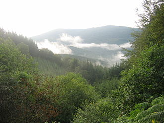 Morvan Regional Natural Park - Image: Morvan bourgogne 2