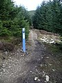 Mountain bike trail, Makeness Hill - geograph.org.uk - 150646.jpg