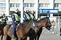 Mounted police in Helsinki.jpg