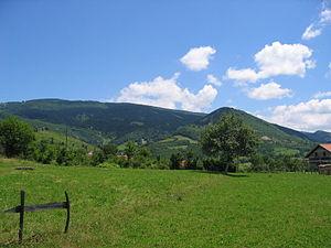 Bosnia (region)