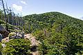 Mt.Kitaokusenjodake 04.jpg
