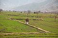 Mulkanah Village-2012.jpg