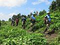 Munigi, Nord-Kivu, RD Congo- Une opération militaire lancée par une Base opérationnelle de la Compagnie, de Munigi au village de Mudja, en province de Nyiragongo. (22209309032).jpg