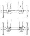 Musculation exercice avant-bras 2.png