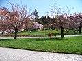 Náměstí Generála Kutlvašra, park.jpg
