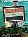 National flag made in rice from Lalbagh flower show Aug 2013 8556.JPG