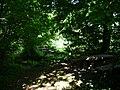 Naturdenkmal Hasequelle Wellingholzhausen Melle -Wald Ausgang- Datei 1.jpg