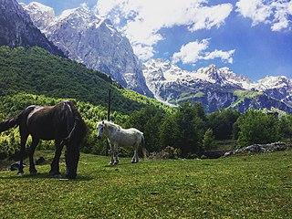 Environment of Albania