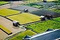 Near osaka airport - panoramio.jpg
