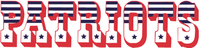 New England Patriots wordmark (1960 - 1992).png