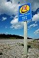 Newfoundland 339 (6438506531).jpg