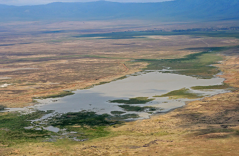 File:Ngorongoro Crater Overview.jpg
