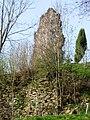 Niederwaldkirchen (Burgruine Steinbach).jpg