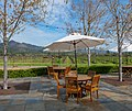 NorCal2018 St Francis Winery Vineyears Sonoma County S0642074.jpg