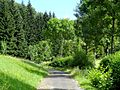 Oberharmersbach, Riersbachtal 11.jpg