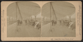 Ocean Pier, Long Branch, N.J, from Robert N. Dennis collection of stereoscopic views 3.png