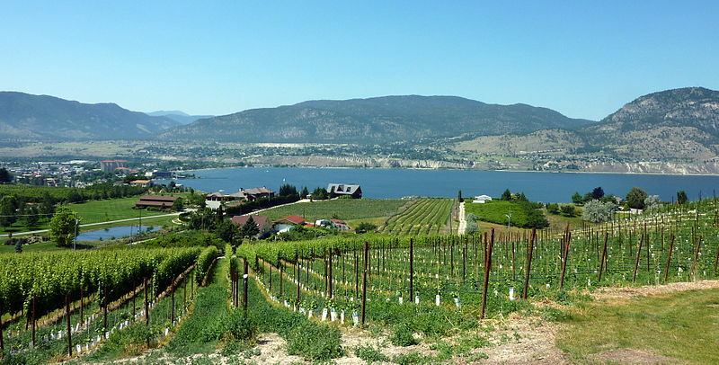 File:Okanagan Lake from the Naramata Bench (7631780744).jpg