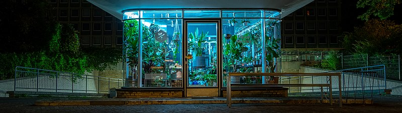 """An old gas station that is now used as a plant greenhouse"""