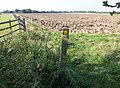 On the Public Footpath to Thorn Lane, Goxhill - geograph.org.uk - 987956.jpg