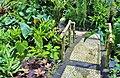 Orchid Garden Bali Indonesia - panoramio (22).jpg