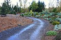 Oregon Garden - Silverton, Oregon - DSC00229.jpg