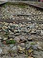 Oude spoorweg bij spoorzone in Tilburg.jpg